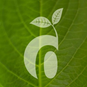 Dekora-Design's production is environmentally sustainable.